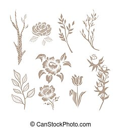 Hand Drawn Plant Monochrome Set