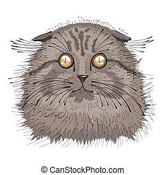 Hand drawn portrait of Cat .