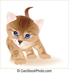 hand drawn portrait of ginger tabby kitten. Watercolor style