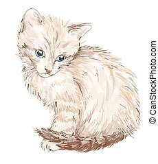 hand drawn portrait of the kitten