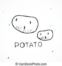 Hand drawn potato Vector