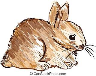 hand drawn rabbit Vector