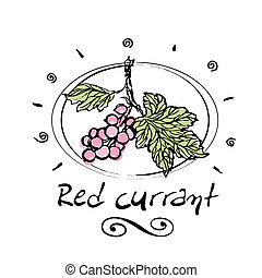 red currant  - hand drawn red currant in vignette