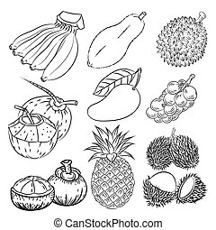 Hand drawn set of different tropical fruits-Vector sketch Design