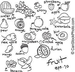 hand drawn set of fruit, doodles