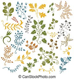Hand drawn set of leaves and flowers. Decorative elements. Vector illustration