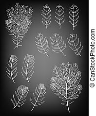 Hand drawn set of plants