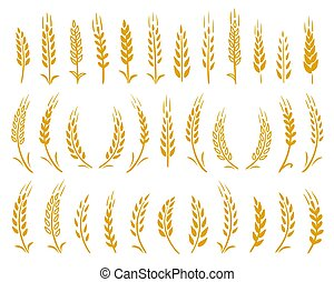 hand drawn set of yellow wheat ears icons