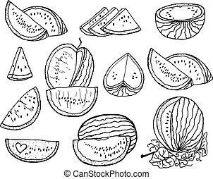 Hand drawn set vector illustration watermelon