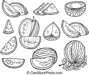 Hand drawn set vector illustration watermelon