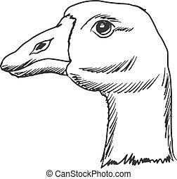 goose - hand drawn, sketch, cartoon illustration of goose