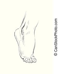 Hand Drawn Sketch Feet Vector illustration