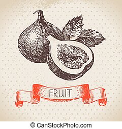 Hand drawn sketch fruit fig. Eco food background. Vector...