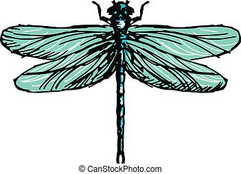 hand drawn, sketch illustration of dragonfly