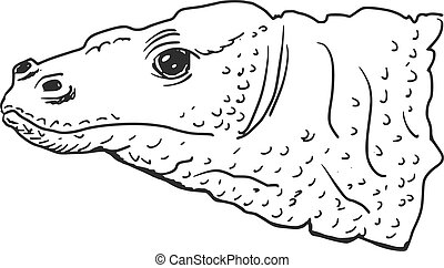 Komodo dragon - hand drawn, sketch illustration of Komodo...