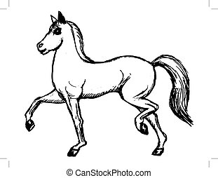 hand drawn, sketch image of horse
