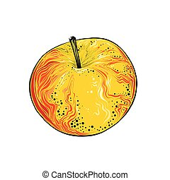 Hand drawn sketch of apple in color. Isolated on white background. Drawing for posters, decoration and print. Vector illustration
