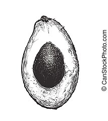Hand drawn sketch of half avocado in black color. Isolated on white background. Drawing for posters, decoration and print. Vector illustration