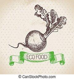 Hand drawn sketch turnip vegetable. Eco food background. ...