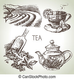 Hand drawn sketch vector tea set