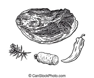 beef brisket and spices - hand drawn sketches of beef ...