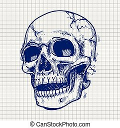 Hand drawn skull sketch