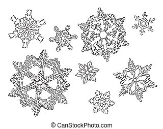 hand drawn snowflakes on the white - Set of the hand drawn...