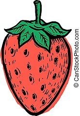 Hand drawn Strawberry isolated on white background. Design eleme