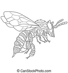 Hand drawn stylized bee insect