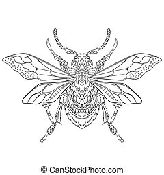 Hand drawn stylized beetle insect