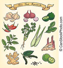hand drawn thai food ingredients - hand drawn illustration...