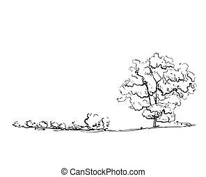 Hand drawn tree