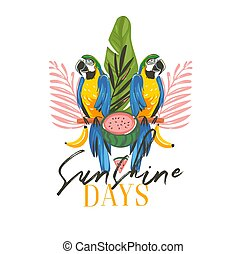 Hand drawn vector abstract cartoon summer time graphic illustrations art with exotic tropical sign with rainforest Parrot Macaw birds, watermelon and Sunshine days text isolated on white background