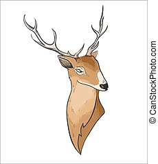 Hand drawn vector cartoon deer header portrait