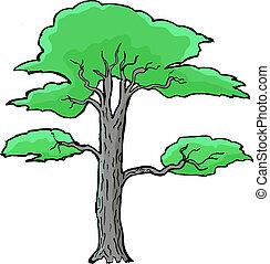 Hand drawn, vector, cartoon illustration of acacia