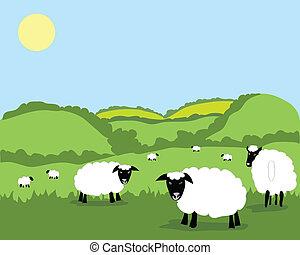 sheep - hand drawn vector illustration of a flock of sheep ...