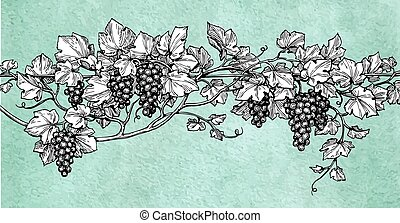 Hand drawn vector illustration of grapes.