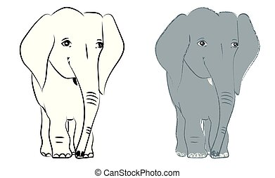 Hand drawn vector illustration with a cute baby elephant - isolated on white background