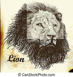 Hand drawn vector  portrait of lion