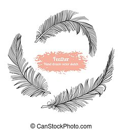 Hand drawn vector set feather sketch style.