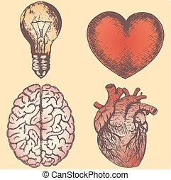 Hand drawn vector sketch illustration set - brain, love and naturalistic heart, light bulb, yellow background.