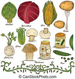 hand drawn vegetable set 4