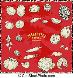 Hand drawn vegetables and fruits. Vector fresh collection of natural food. Sketch illustration