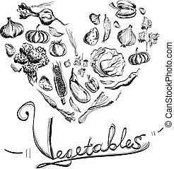 Hand drawn vegetables set with white background.
