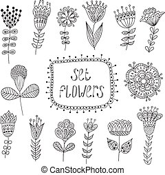 Hand Drawn vintage floral elements. Flowers.
