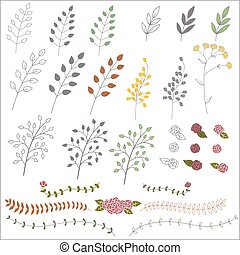 Hand drawn vintage floral elements. Set of branches, icons and decorative elements.