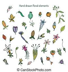 Hand Drawn vintage floral elements