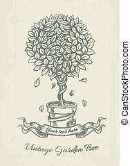 Hand drawn vintage garden tree with falling leaves