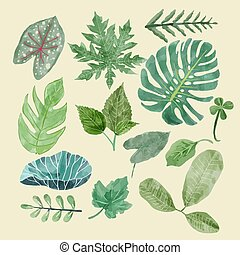 Botanical clipart Set of Green leaves, tropical plants.