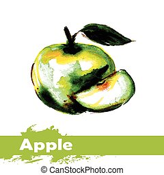 Hand drawn watercolor painting on white background. fruit apple